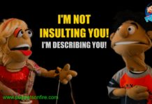 I am not insulting you